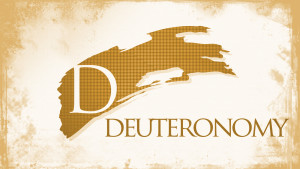 Deuteronomy Chapter 22 Summary