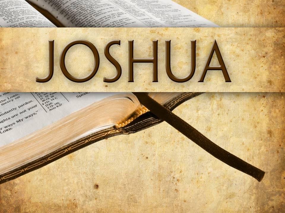 Joshua: Courageous Discipleship. JesusWalk Bible Study Series.